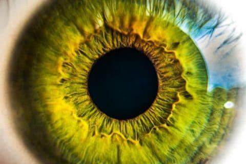 DeepMind ประสบความสำเร็จในการตรวจเบาหวานขึ้นตา